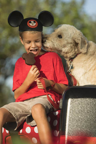 Select Walt Disney World Hotels Allow Dogs