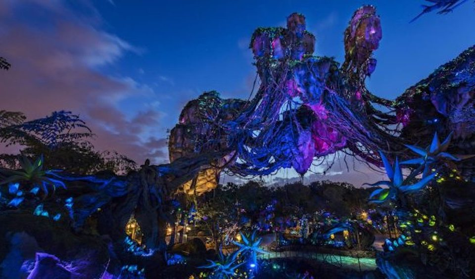 Disney After Hours: Animal Kingdom