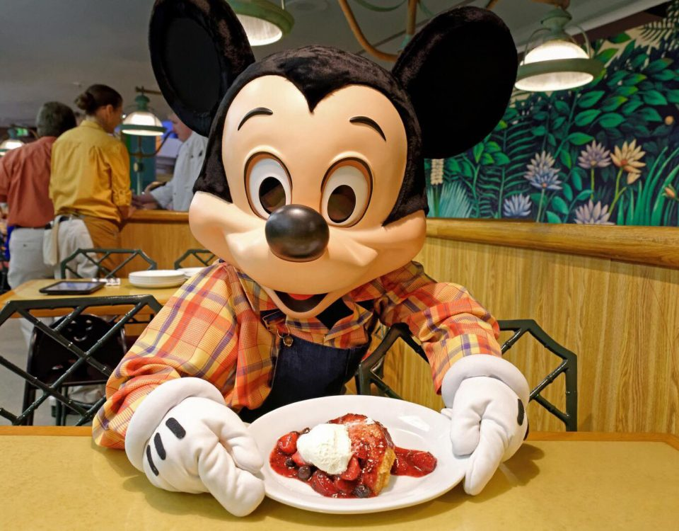 Disney Dining Plan Plus